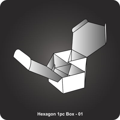 Custom Printed Hexagon 1pc Box