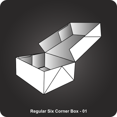 Custom Printed Regular Six Corner Box